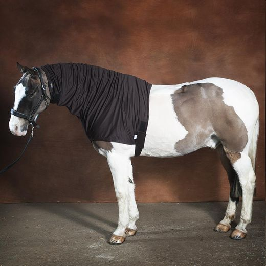 Headless Anti-Itch Horse Hood